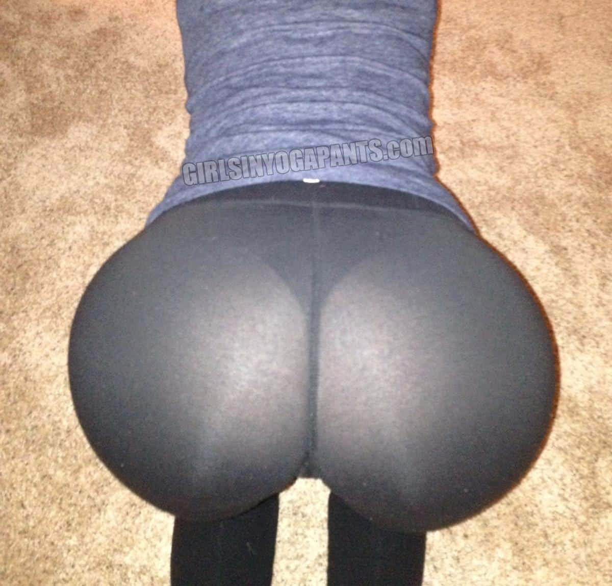COUGAR BENT OVER IN SEE-THROUGH YOGA PANTS